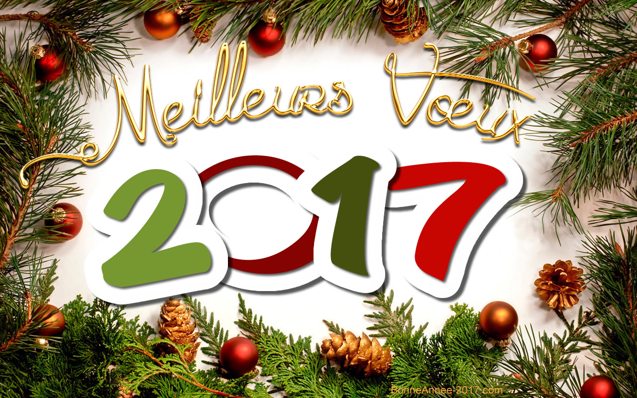 Meilleurs voeux pour 2017 mairie de blessacmairie de blessac - Texte carte de voeux 2017 ...