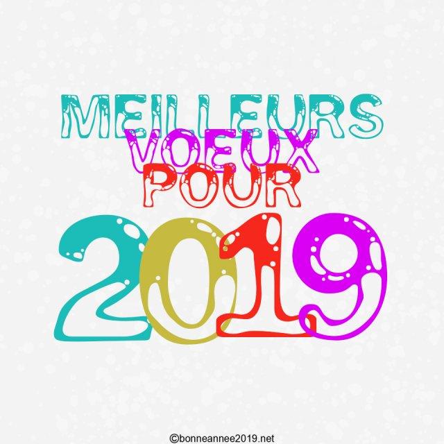 carte-voeux-2019